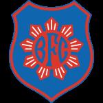 Bonsucesso logo