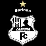 Zamora II logo