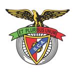 SC Angrense logo