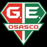 Grêmio Osasco logo