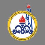 Naft MIS logo