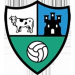 SD Borja logo