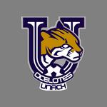Ocelotes logo