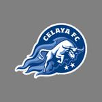 Celaya II logo