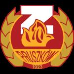 Znicz logo