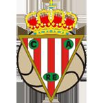 CA River Ebro logo