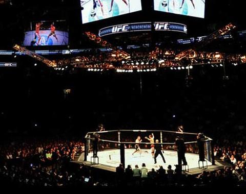 Mixed Martial Arts (UFC)