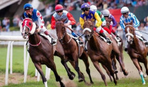 Exemption from fees in horse racing