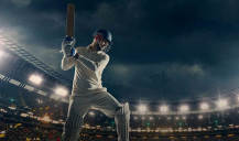 Find out how cricket works